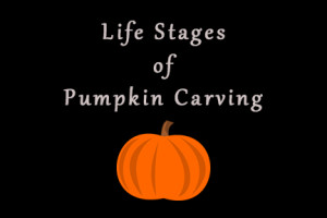 LIfe Stages of Pumpkin Carving